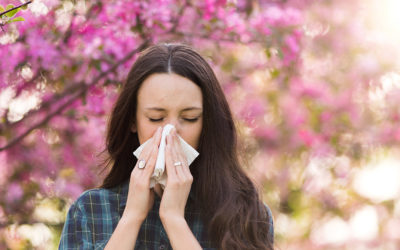 Fall Allergies: What causes them and how to ease them